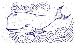 White whale label. Stock Photos