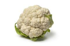White whole cauliflower close up Royalty Free Stock Photography