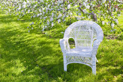 White Wicker Stock Photography