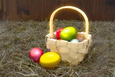 White wicker basket with Easter eggs on the background of dry hay.  Royalty Free Stock Images