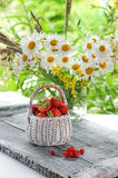 White wicker basket with strawberries and red currants on a background of a bouquet of daisies. Royalty Free Stock Image