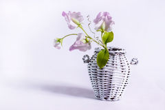 White wicker jug with a flower made of cold pottery. White wicker and flower pot made of hardened polymer clay Stock Photo