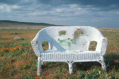 White wicker sofa in field. Abandoned wicker sofa in a field of poppies in Antelope Valley, California Royalty Free Stock Image