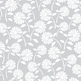 White wild flowers seamless pattern Stock Images