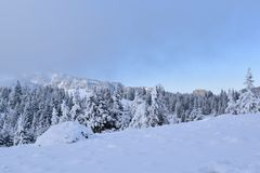 White in the Wild. Trekking on Ciucaș Mountains in winter, while all white and snowy Royalty Free Stock Photography