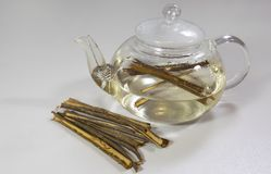 White Willow Bark Medical tea. Tea from Willow Bark close-up stock photos