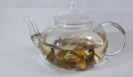 White Willow Bark Medical tea. Tea from Willow Bark close-up stock photo
