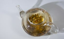White Willow Bark Medical tea. Tea from Willow Bark close-up royalty free stock photos