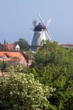 White windmill on Bornholm Stock Image