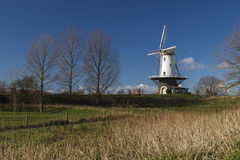 White windmill in Veere  Stock Image