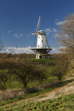 White windmill in Veere  Royalty Free Stock Image