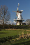 White windmill in Veere  Stock Photos