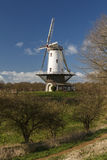 White windmill in Veere  Royalty Free Stock Photo