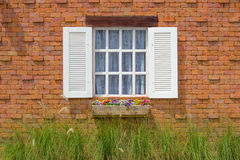 White window. On red brick wall Stock Images