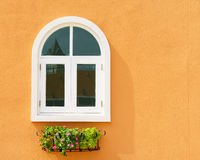White window and flower hanging with orange wall Stock Images