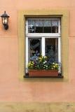 White Window frame with flowers on orange pink wall in Europe. White Window frame with flowers on orange pink old wall in Europe Royalty Free Stock Photos