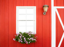 White window on red wall Royalty Free Stock Photography