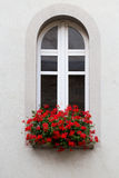 White window with vase of red flowers. A basket of bright pink and red flowers hangs on the window of a home stock image
