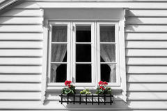 White window. At wooden white house with two flowers arrangement Royalty Free Stock Photos