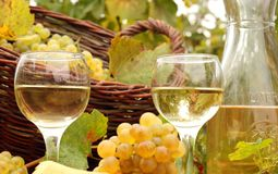 Free White Wine Stock Image - 19010881