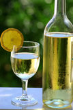 White wine. Of the alentejo region in the south of portugal Royalty Free Stock Photo
