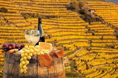White wine with barrel on famous vineyard in Wachau, Spitz, Austria. White wine with barrel on vineyard in Wachau, Spitz, Austria Royalty Free Stock Photo