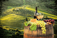 White wine with barrel on vineyard in Chianti, Tuscany, Italy. White wine with barrel on famous vineyard in Chianti, Tuscany, Italy Royalty Free Stock Images