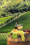 White wine with barrel on vineyard in Chianti, Tuscany, Italy. White wine with barrel on famous vineyard in Chianti, Tuscany, Italy Stock Photo