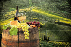 White wine with barrel on vineyard in Chianti, Tuscany, Italy. White wine with barrel on famous vineyard in Chianti, Tuscany, Italy Stock Image