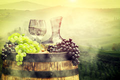White wine with barrel on vineyard in Tuscany, Italy Royalty Free Stock Photo