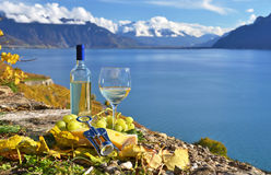 White wine and basket of grapes. Stock Photography