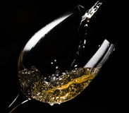 White wine  on black Stock Photography