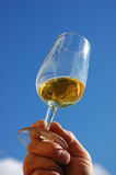 White Wine Blue Sky. A swiss wine producer holds a glass of heavy desert wine up against a clear blue sky Royalty Free Stock Photography