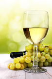 White wine on blurred background Royalty Free Stock Photo