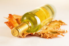 White wine bottle with autumn vine leaves. On gray table Royalty Free Stock Image