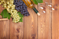 White wine bottle and bunch of grapes Royalty Free Stock Photography