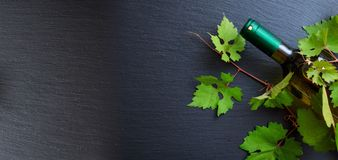 White wine bottle and fresh grape leaves on black background, copy space Royalty Free Stock Photo