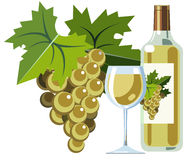 White wine with bottle, glass and grapes. Illustration of white wine bottle with glass and grapes Royalty Free Stock Photos