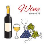 White wine bottle, glass and grapes vector illustration. Royalty Free Stock Images