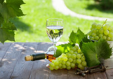 White wine bottle and glass with white grape Stock Photography