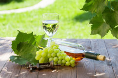 White wine bottle and glass with white grape Stock Images