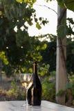 White wine bottle Stock Image