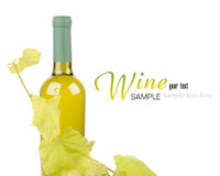 White wine bottle and grapes leaf Stock Images