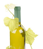 White wine bottle and grapes leaf. Isolated on white background Stock Photo