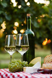 White wine and bottle Stock Images