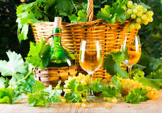 White wine bottle, two glasses, bunch of grapes in basket Royalty Free Stock Images