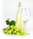 White wine bottle, wineglass and grapes. Stock Images