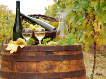 White wine and bottles Royalty Free Stock Photo