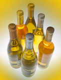 White wine bottles Stock Image
