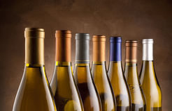 White wine bottles Stock Images